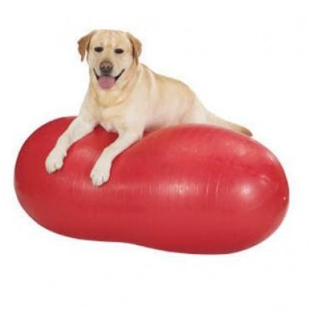 K9 Peanut-shaped stability ball