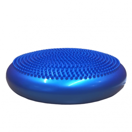 K9 Core Stability Disc